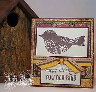 You Old Bird006
