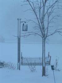 Winter_2008024_3
