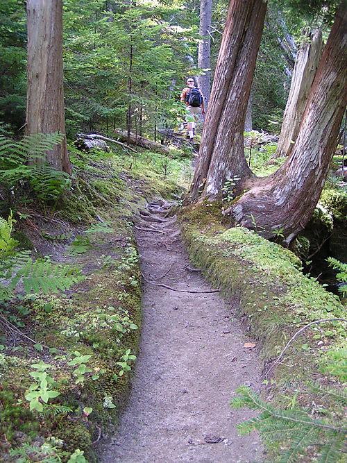 """A hike on the """"Sea Trail"""""""